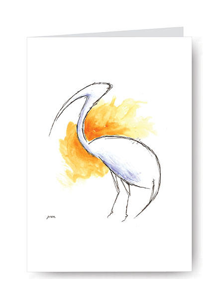 Abstract Ibis,
